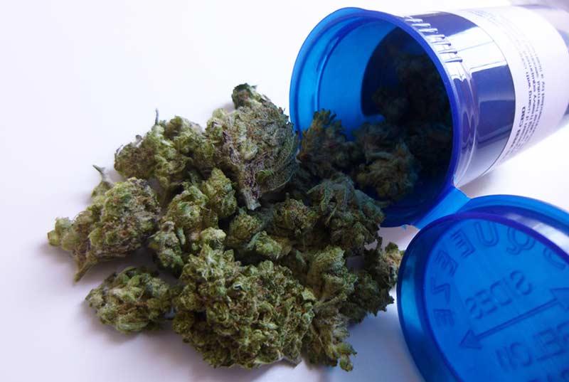marijuana-for-seniors