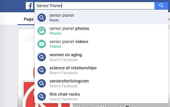 fb-search-bar
