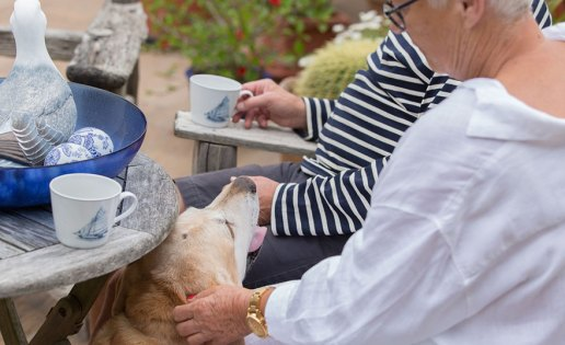 seniors-at-home-with-dog